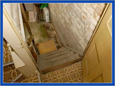 Cellar Conversion